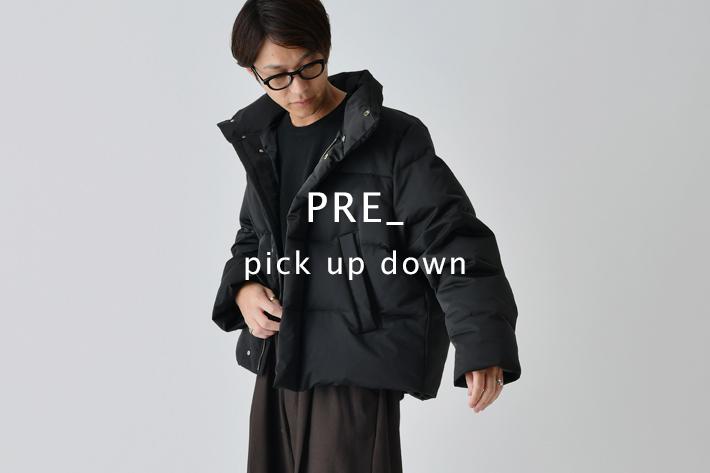 Lui's PRE_pick up down