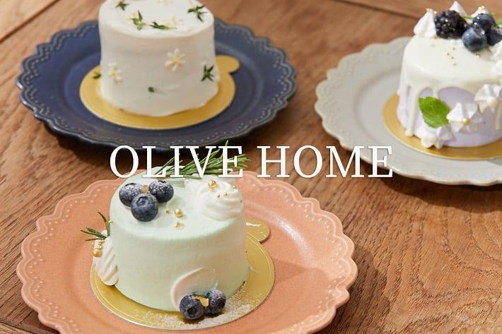 OLIVE des OLIVE OUTLET OLIVE HOME