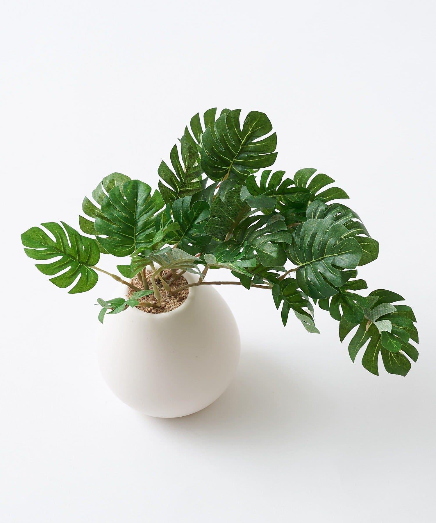 CIAOPANIC TYPY(チャオパニックティピー) ライフスタイル 〈ミニ観葉植物・フェイクグリーン〉MRポット グリーン