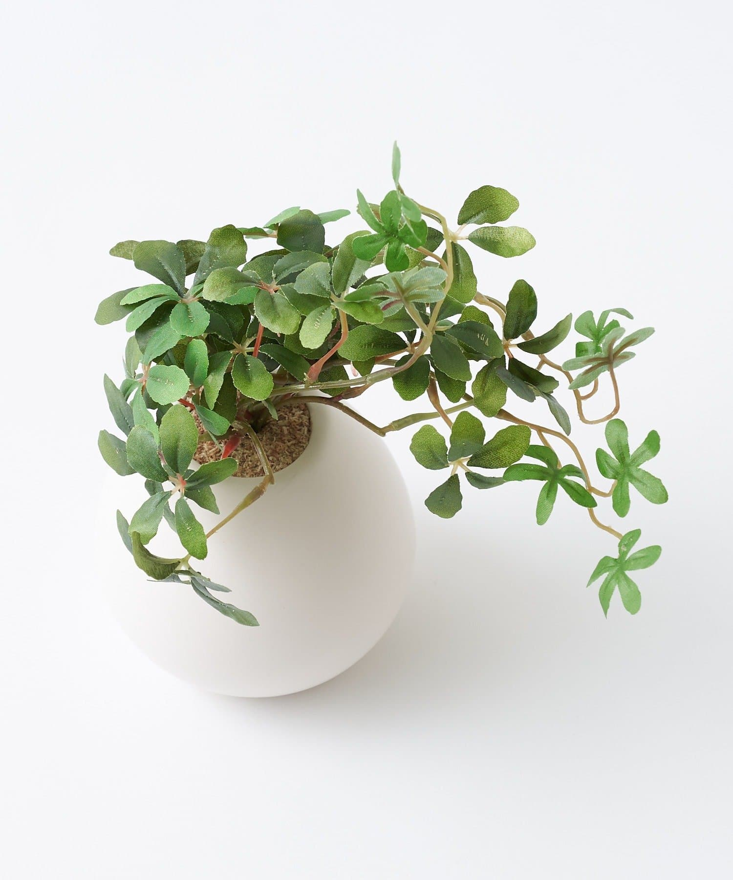 CIAOPANIC TYPY(チャオパニックティピー) ライフスタイル 〈ミニ観葉植物・フェイクグリーン〉MRポット グリーンその他1