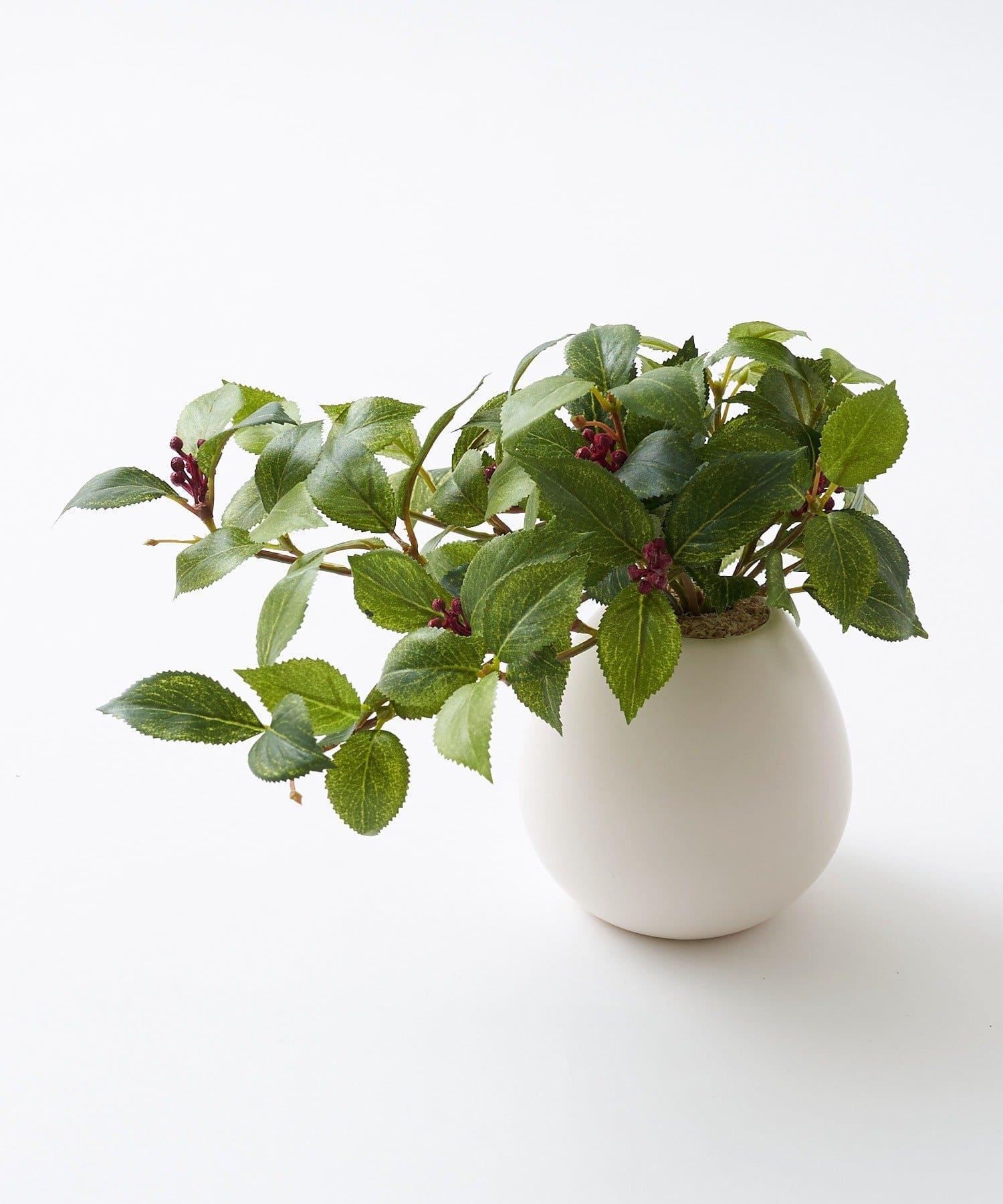 CIAOPANIC TYPY(チャオパニックティピー) ライフスタイル 〈ミニ観葉植物・フェイクグリーン〉MRポット グリーンその他3