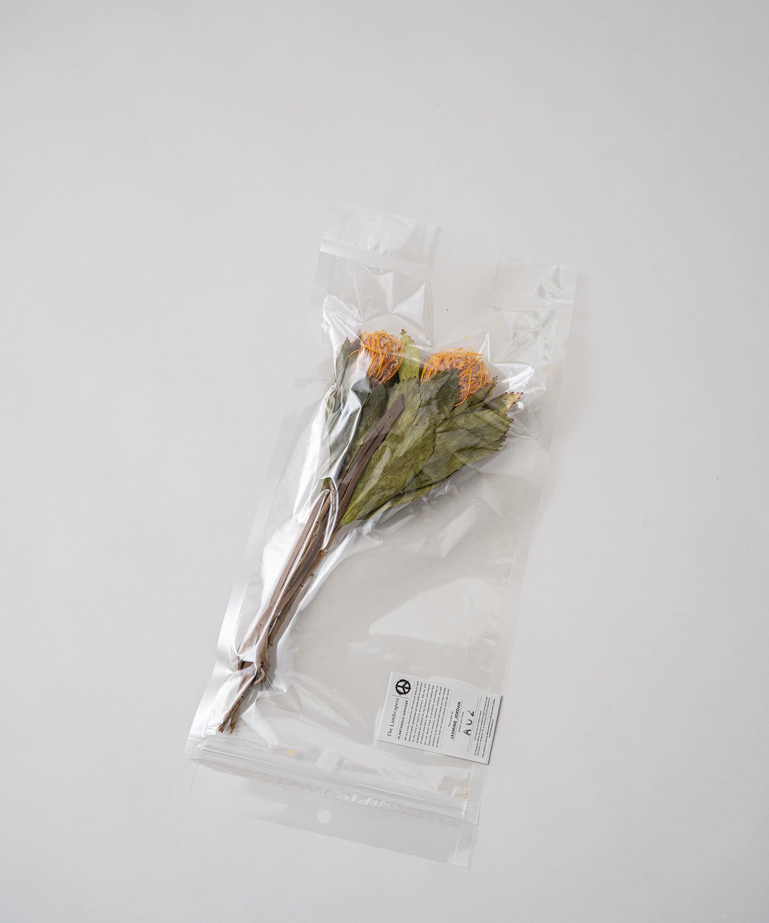 Loungedress(ラウンジドレス) レディース 【The Landscapers】PLANTAHOLIC DIFFUSER  A オレンジ