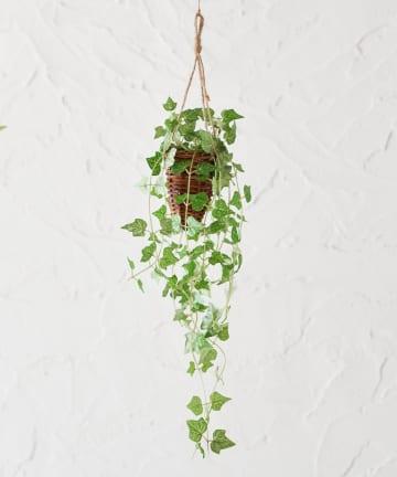 CIAOPANIC TYPY(チャオパニックティピー) 〈ミニ観葉植物・フェイクグリーン〉ハンギング/アイビー
