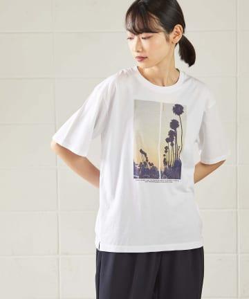 OUVRAGE CLASSE(ウヴラージュクラス) 【TICCA/ティッカ】PALM TREE転写プリントTシャツ