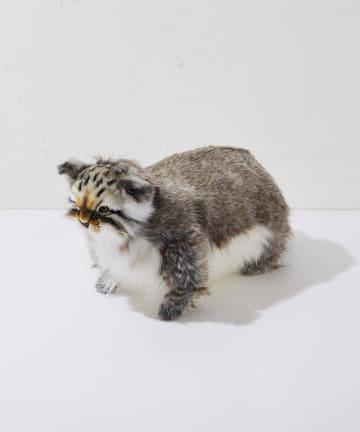 BONbazaar(ボンバザール) 【HANSA】マヌルネコ PALLAS CAT