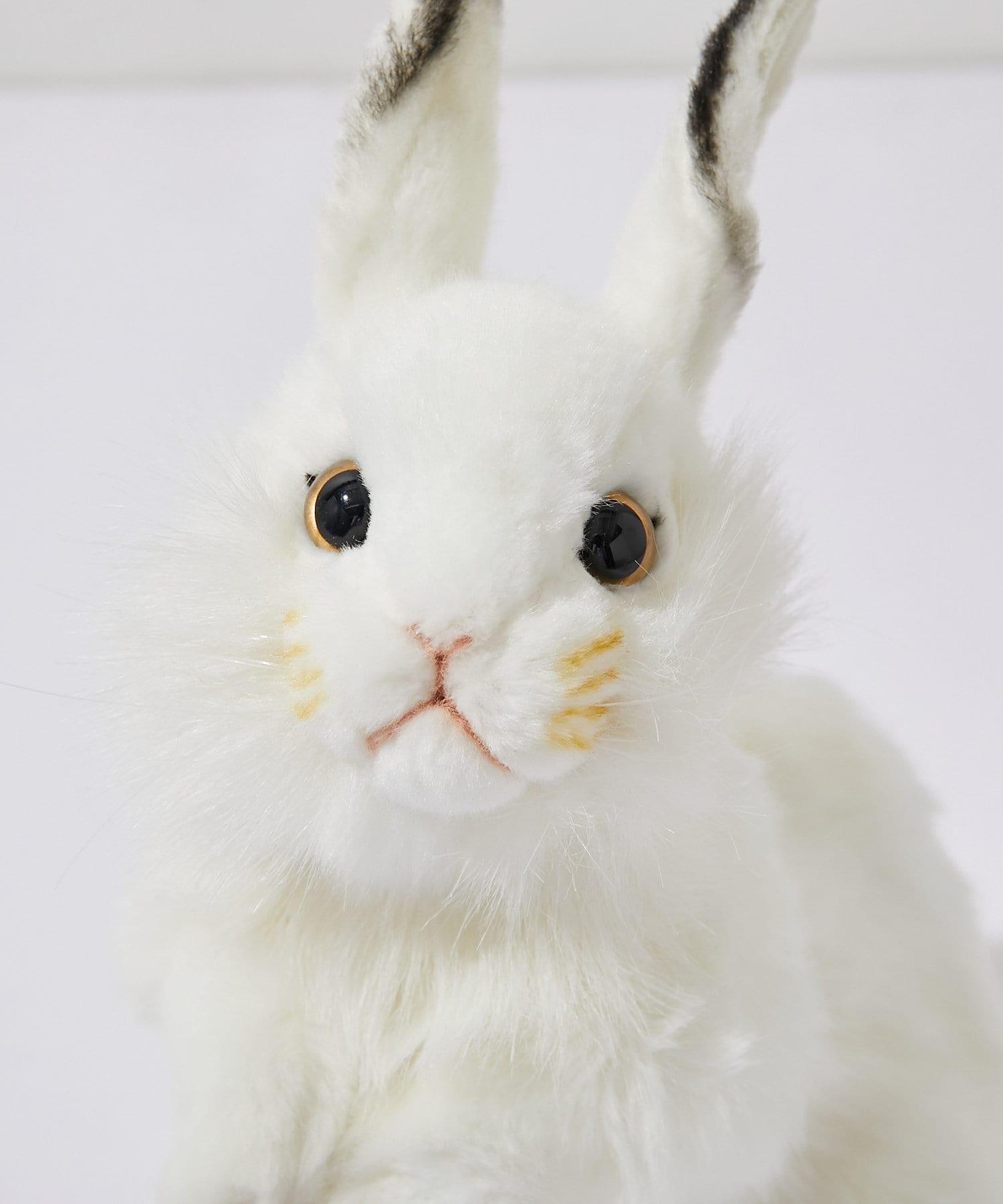 BONbazaar(ボンバザール) ライフスタイル 【HANSA】シロウサギ WHITE RABBIT カラーなし