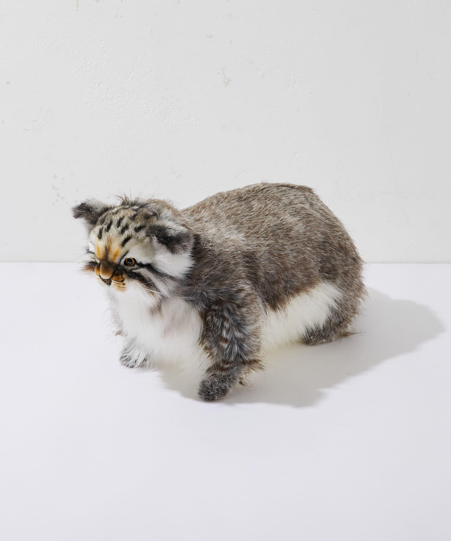 BONbazaar(ボンバザール) ライフスタイル 【HANSA】マヌルネコ PALLAS CAT カラーなし