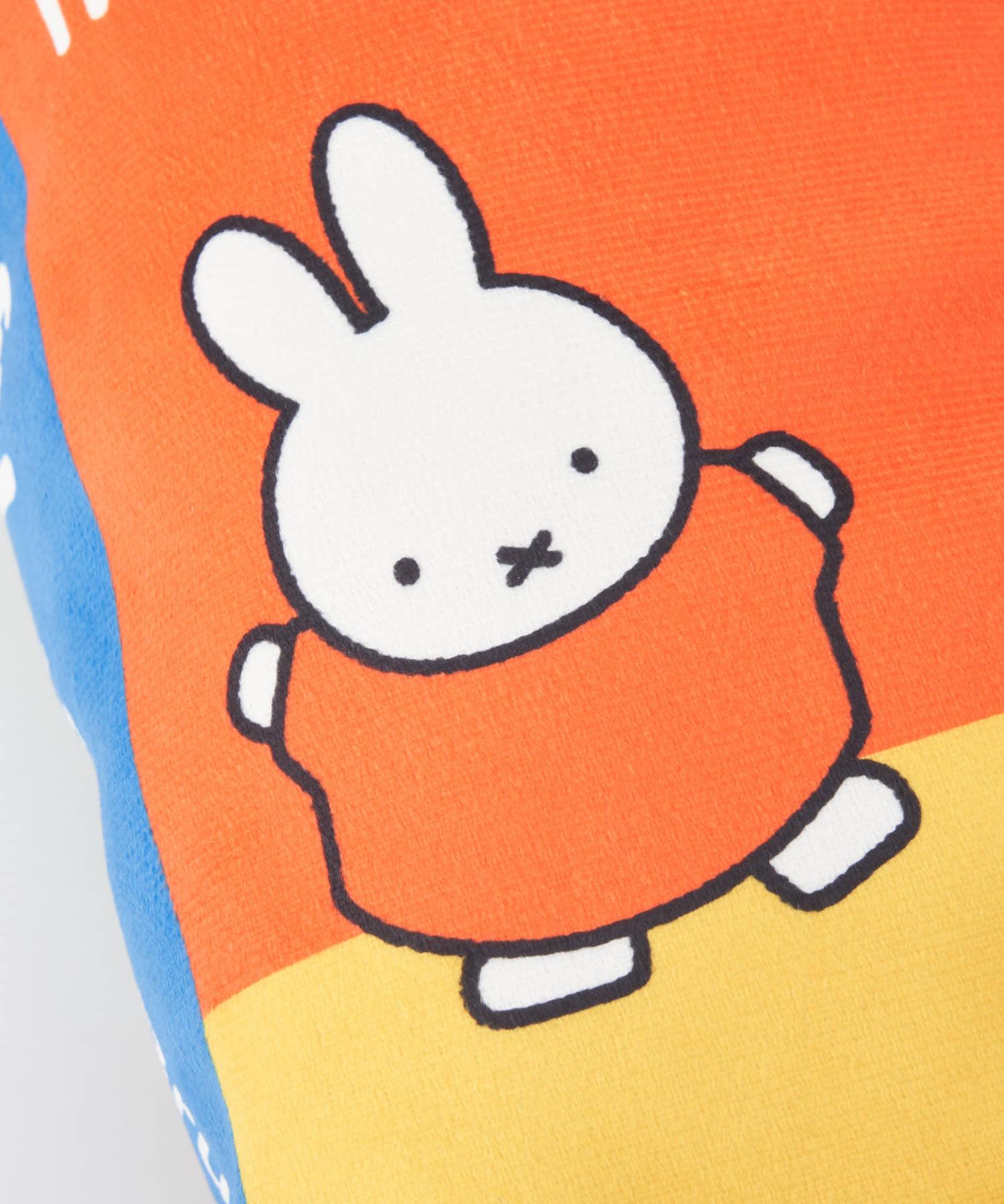 BIRTHDAY BAR(バースデイバー) ミッフィー 動物図鑑 本型クッション
