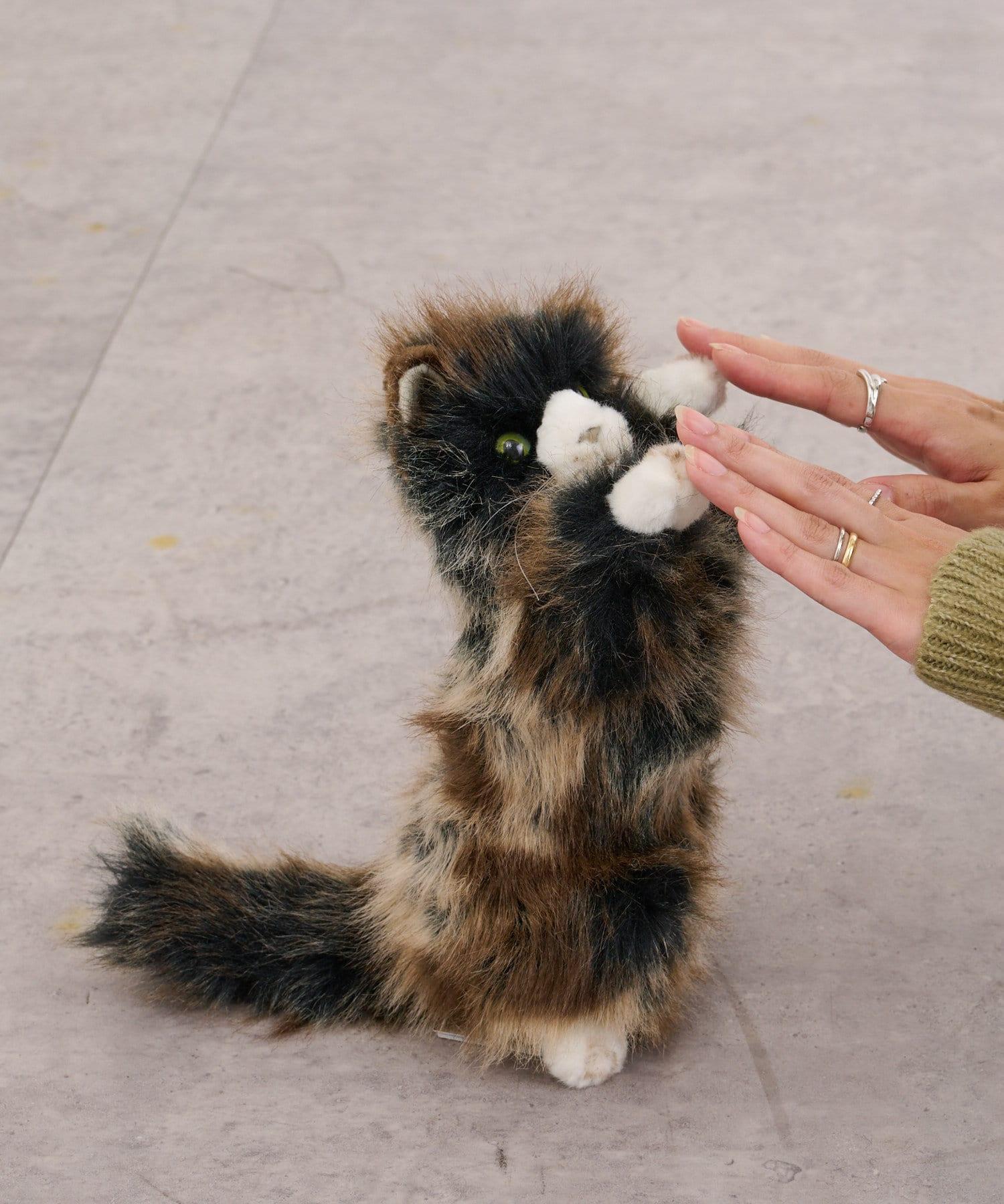 BONbazaar(ボンバザール) 【HANSA】ネコ(仔) 26 CAT ぬいぐるみ